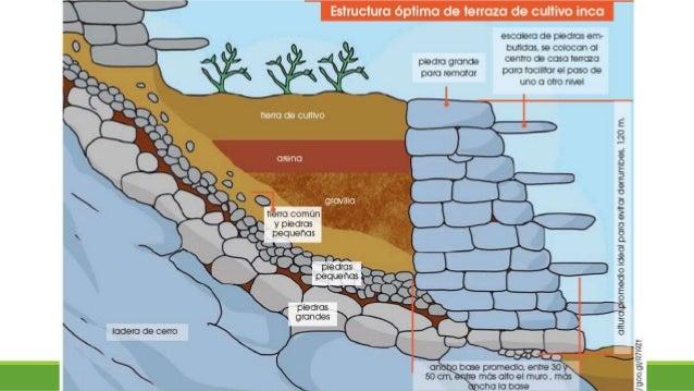 Terrazas De Cultivo Incas
