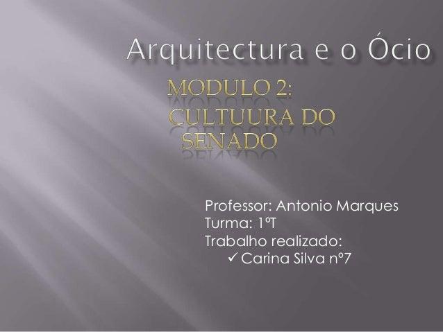 Professor: Antonio MarquesTurma: 1ºTTrabalho realizado:    Carina Silva nº7