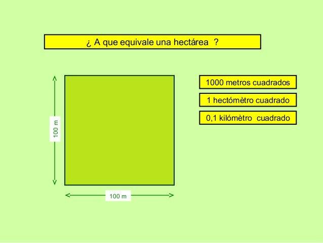 Cultura general practica jugando for Cuanto es 35 metros cuadrados