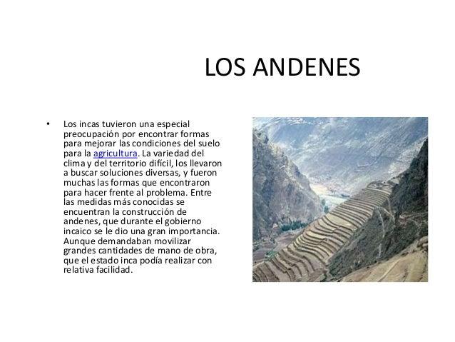 Cultura inca expo for Terrazas 14 vicuna