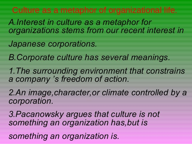 Cultural Approach To Organization