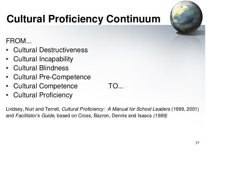 Cultural competence presentation