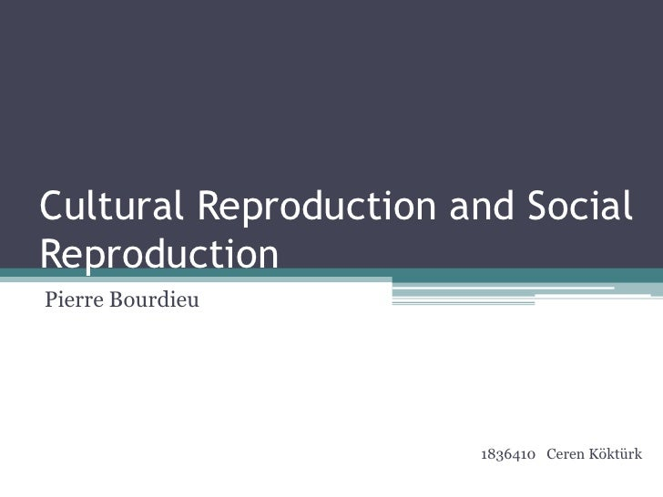 bourdieu social reproduction thesis Bourdieu's social reproduction thesis and the photo provided by flickr the rising interest in food research crosscuts various academic disciplines.