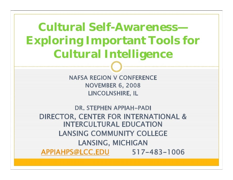 cultural self awareness Vi self-awareness: becoming aware of your own worldview (adapted from buhin et al 2004) 1 learning about your own culture 2 understanding your personal worldview 3 appreciating your.