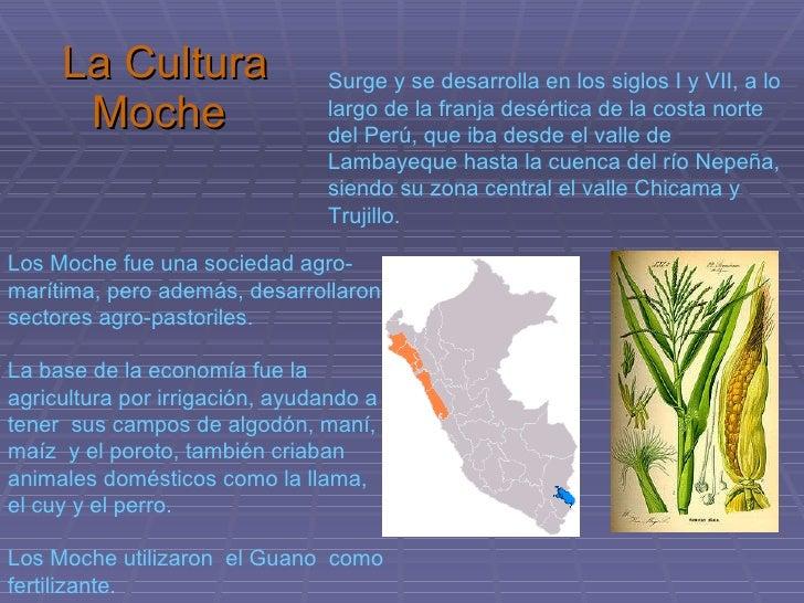 Cultura moche Slide 2