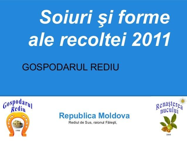 Soiuri şi formeale recoltei 2011GOSPODARUL REDIU      Republica Moldova        Rediul de Sus, raionul Făleşti,