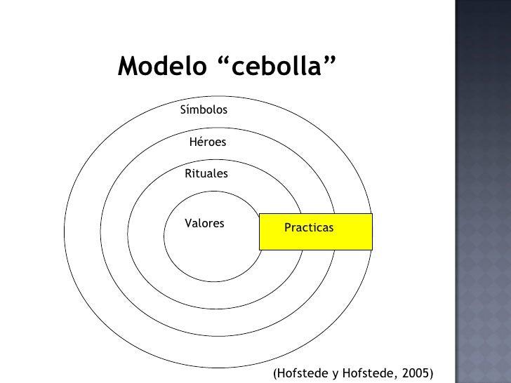 """8  modelo """"cebolla"""""""