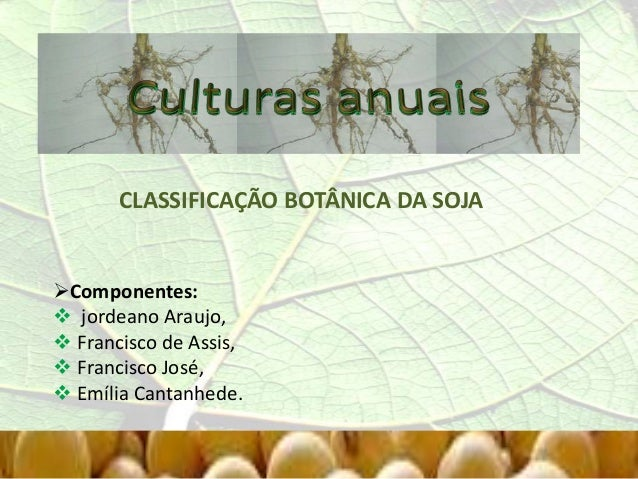 CLASSIFICAÇÃO BOTÂNICA DA SOJA Componentes:  jordeano Araujo,  Francisco de Assis,  Francisco José,  Emília Cantanhed...