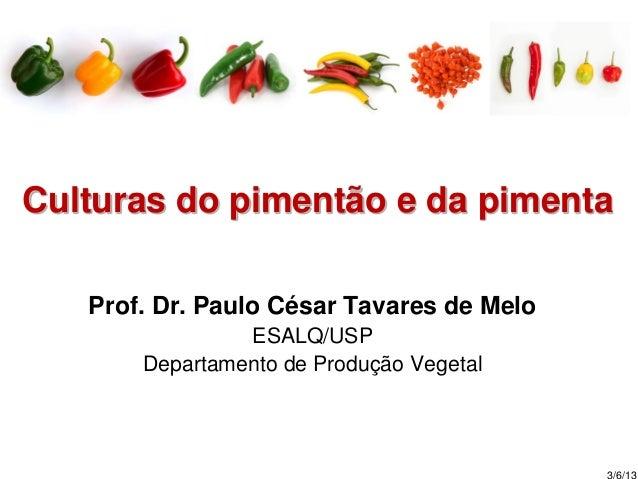 Culturas do pimentão e da pimenta Prof. Dr. Paulo César Tavares de Melo ESALQ/USP Departamento de Produção Vegetal