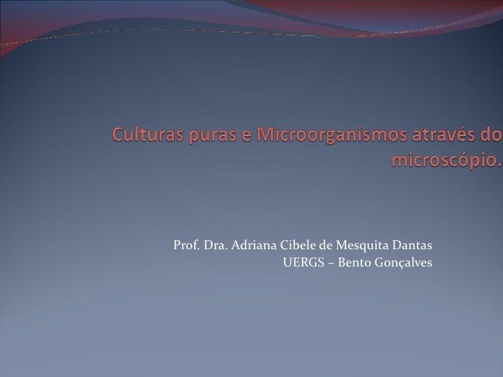 Prof. Dra. Adriana Cibele de Mesquita Dantas                   UERGS – Bento Gonçalves