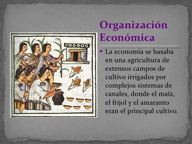 <ul><li>La economía se basaba en una agricultura de extensos campos de cultivo irrigados por complejos sistemas de canales...