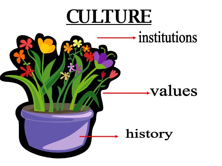 institutions history CULTURE values