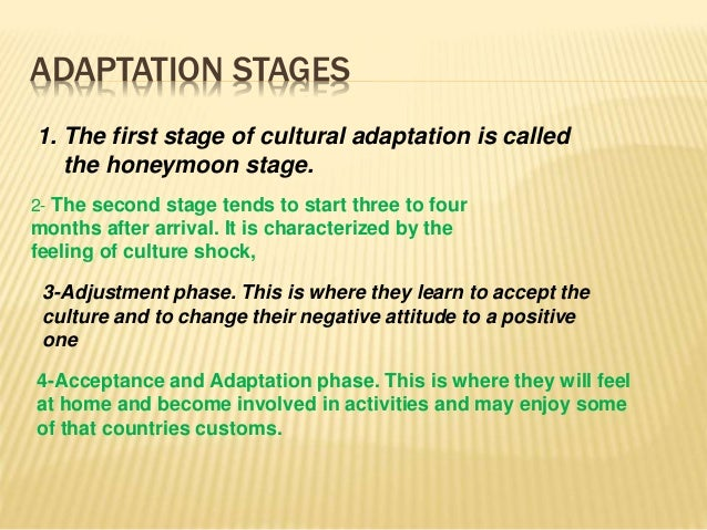 cross-Culture adaptation theory