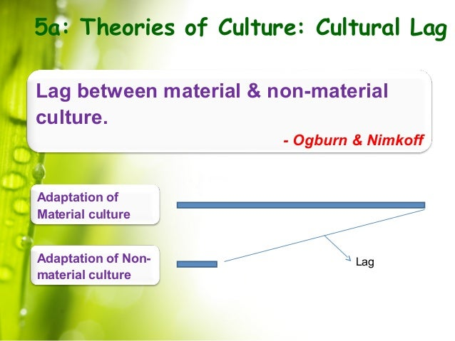 cultural lag What did ogburn mean by cultural lag provide two examples of cultural lag.
