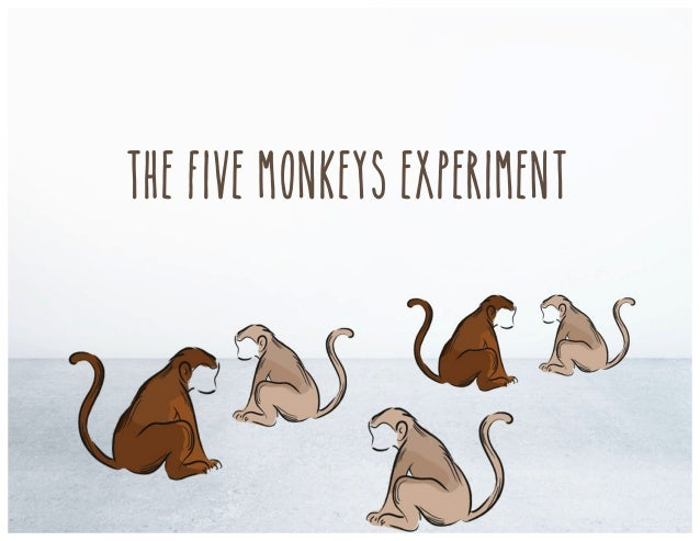 The Five Monkeys Experiment