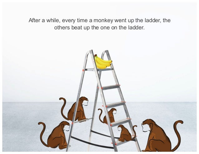 After a while, every time a monkey went up the ladder, the others beat up the one on the ladder.