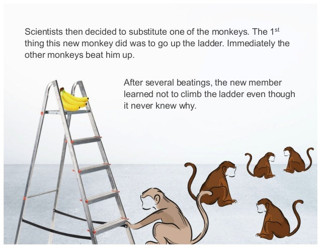 Scientists then decided to substitute one of the monkeys. The 1st thing this new monkey did was to go up the ladder. Immed...
