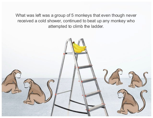 What was left was a group of 5 monkeys that even though never received a cold shower, continued to beat up any monkey who ...