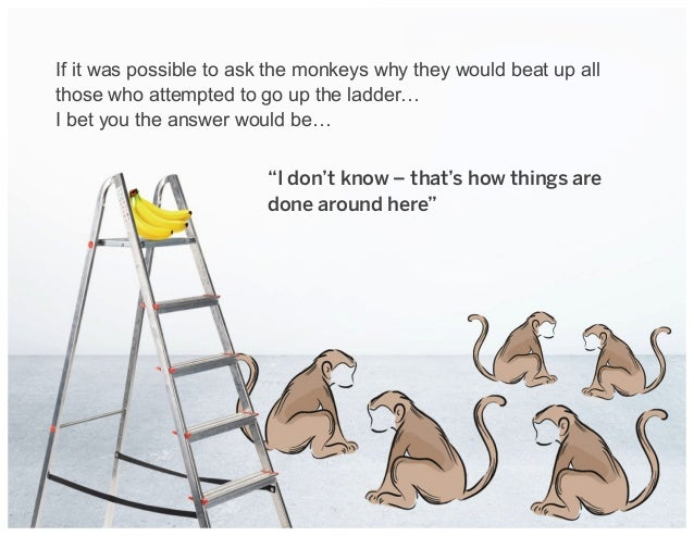 If it was possible to ask the monkeys why they would beat up all those who attempted to go up the ladder… I bet you the an...
