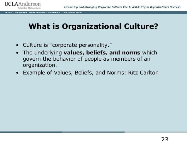 Culture Examples