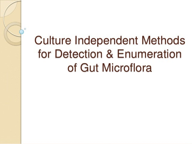Culture Independent Methods for Detection & Enumeration of Gut Microflora