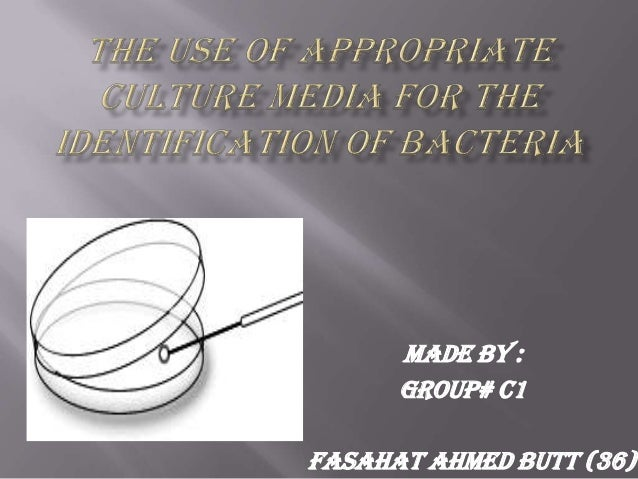 Made by :Group# C1Fasahat Ahmed Butt (36)