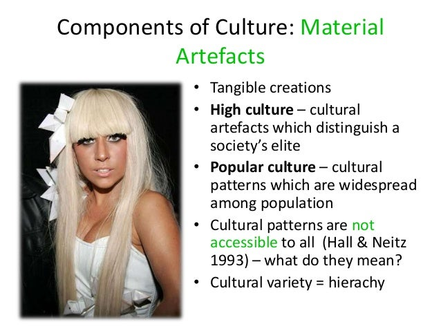 subcultures popular culture and cultural capital The concept of subcultures was developed in sociology and cultural studies   described subcultural capital as the cultural knowledge and commodities   their style (particularly clothing and music) may be adopted by mass culture for.