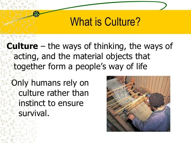 Culture  Slide 2