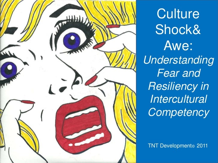Culture   Shock&    Awe:Understanding   Fear and Resiliency in Intercultural Competency TNT Development© 2011