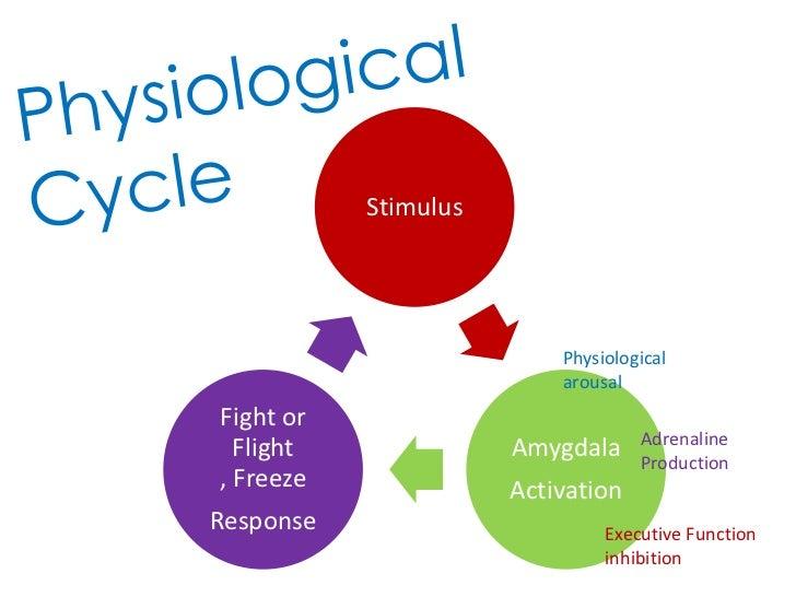 Stimulus                          Physiological                          arousalFight or                                  ...