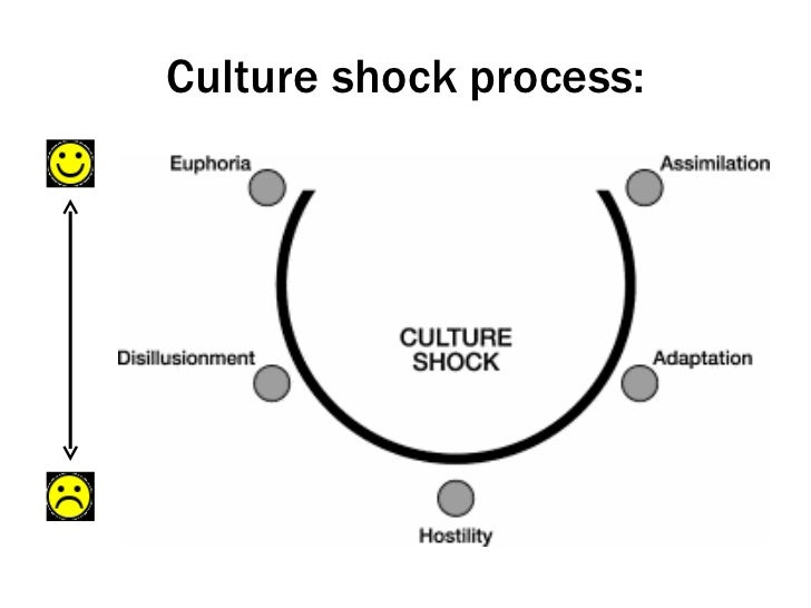 an overview of the characteristics of culture shocks Tour start here for a quick overview of the site shock waves characteristics burgers' equation 'shocks' not matching the characteristics 2.