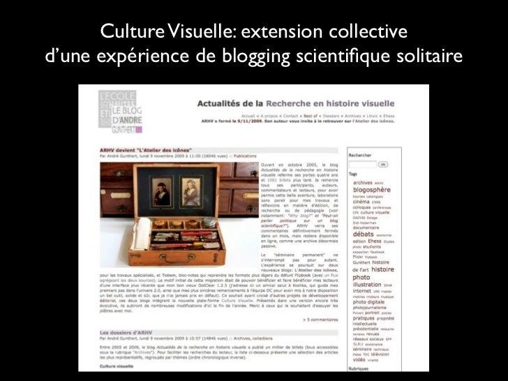 Culture Visuelle: extension collectived'une expérience de blogging scientifique solitaire