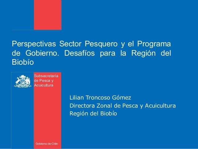 Subsecretaría de Pesca y Acuicultura Gobierno de Chile Perspectivas Sector Pesquero y el Programa de Gobierno. Desafíos pa...