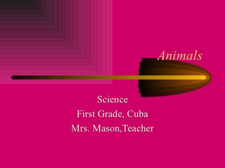 Animals  Science First Grade, Cuba Mrs. Mason,Teacher
