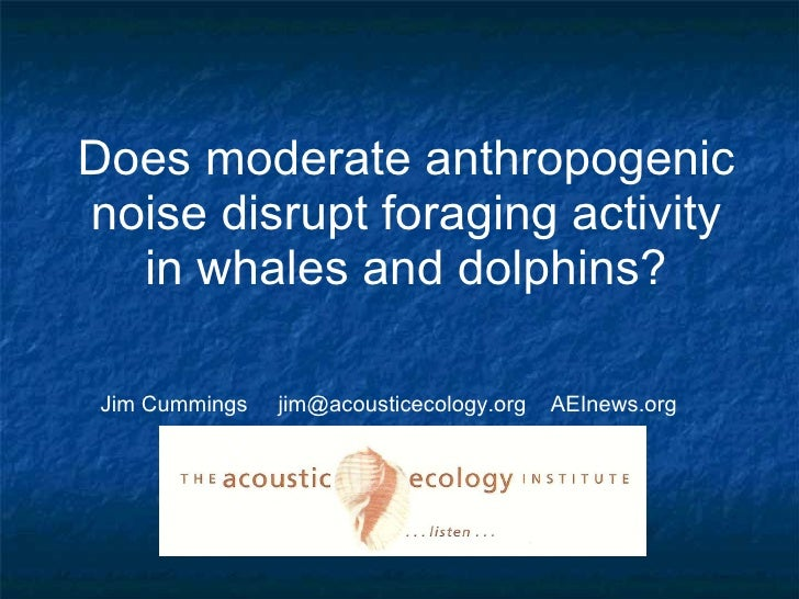 Does moderate anthropogenic noise disrupt foraging activity in whales and dolphins? Jim Cummings  jim@acousticecology.org ...