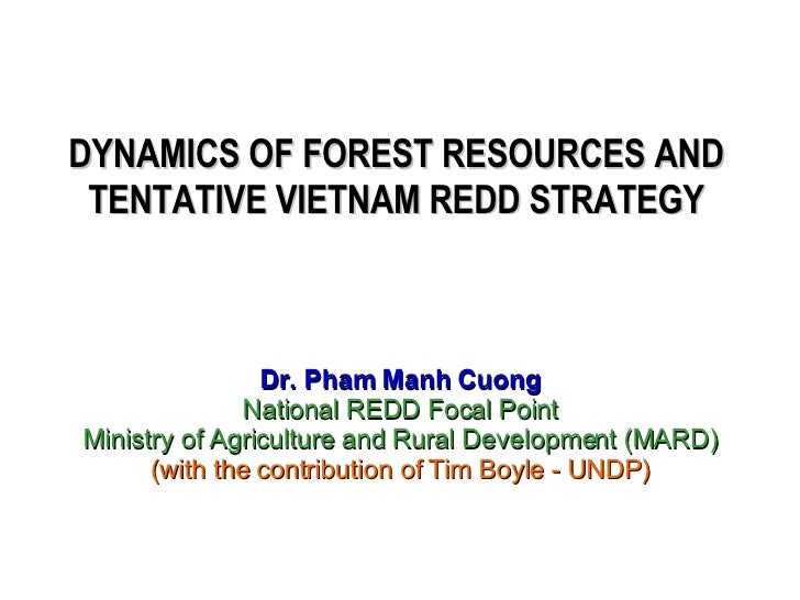 DYNAMICS OF FOREST RESOURCES AND TENTATIVE VIETNAM REDD STRATEGY Dr. Pham Manh Cuong National REDD Focal Point Ministry of...