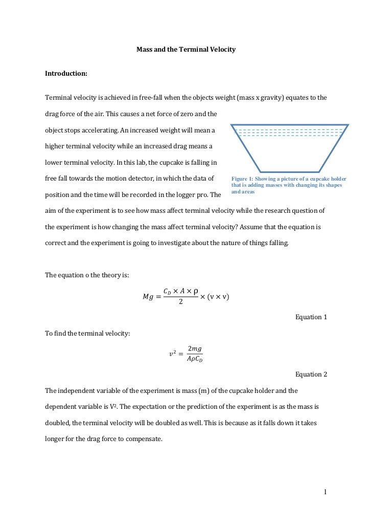 Mass and the Terminal Velocity<br />Introduction:<br />Figure 1: Showing a picture of a cupcake holder that is adding mass...