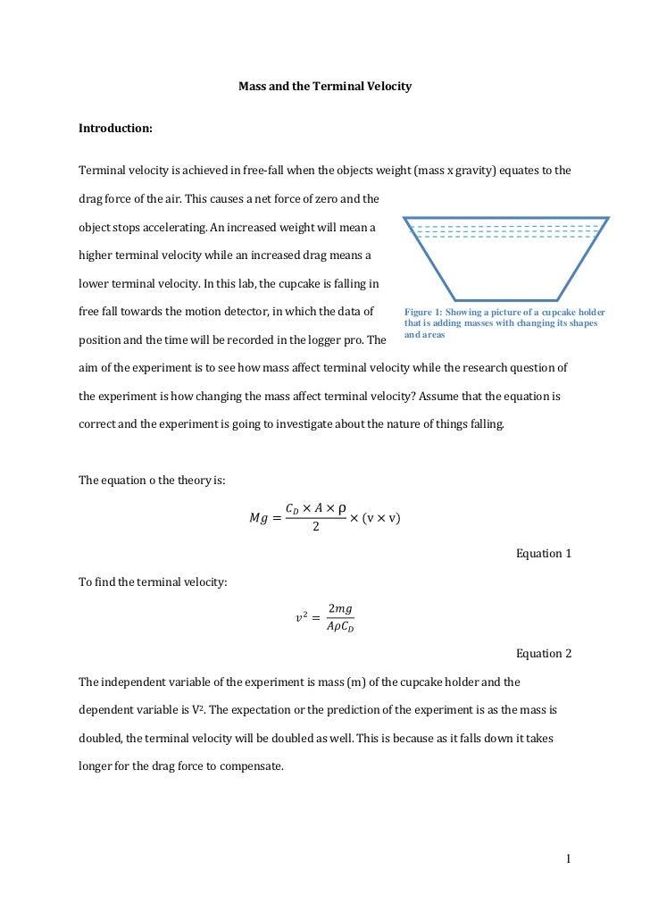 Velocity Website Design