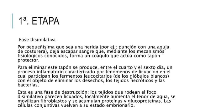 1ª. ETAPA Fase disimilativa Por pequeñísima que sea una herida (por ej.: punción con una aguja de costurera), deja escapar...