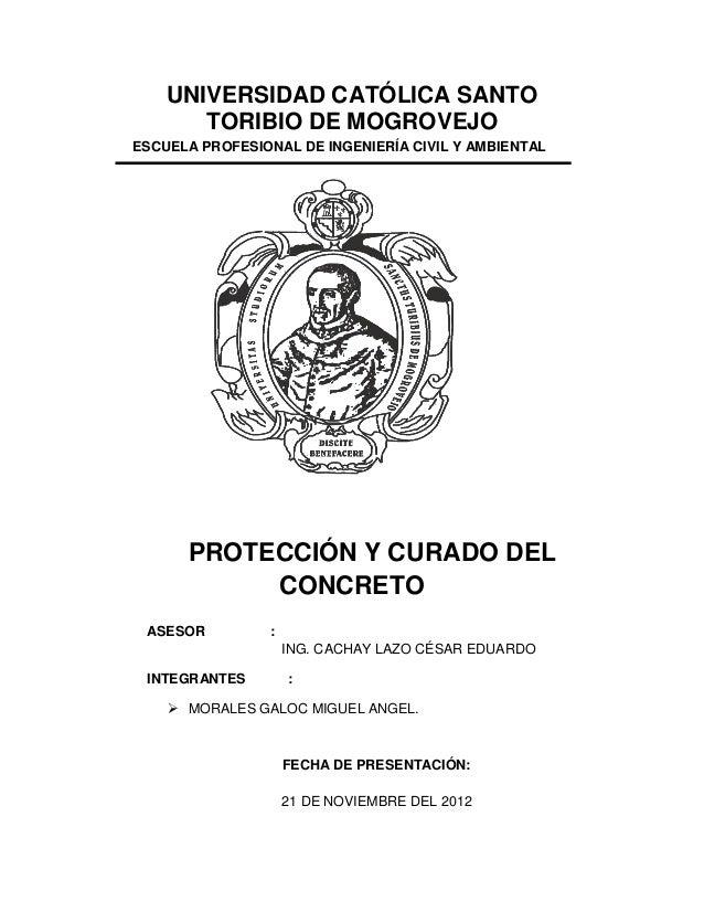UNIVERSIDAD CATÓLICA SANTO TORIBIO DE MOGROVEJO ESCUELA PROFESIONAL DE INGENIERÍA CIVIL Y AMBIENTAL PROTECCIÓN Y CURADO DE...