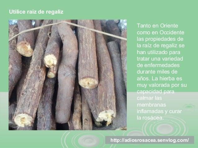 http://adiosrosacea.senvlog.com/ Utilice raíz de regaliz Tanto en Oriente como en Occidente las propiedades de la raíz de ...