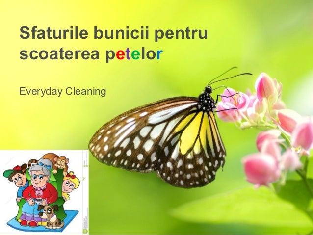 Sfaturile bunicii pentru scoaterea petelor Everyday Cleaning