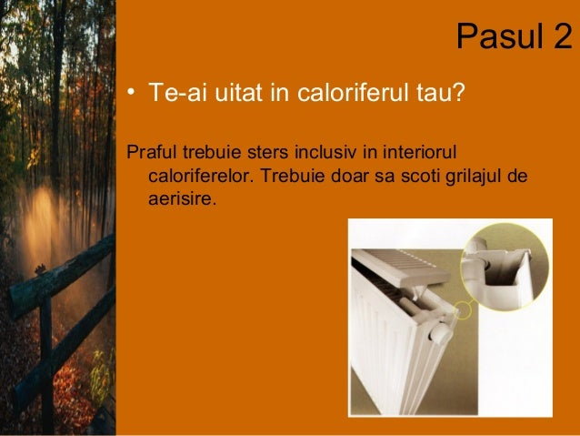 Curatenia in 8_pasi Slide 3