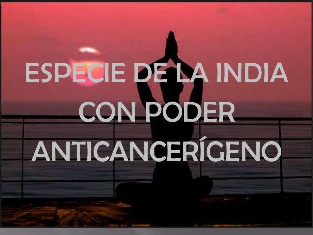 ESPECIE DE LA INDIA CON PODER ANTICANCERÍGENO