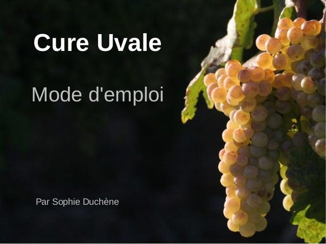 Cure Uvale Mode d'emploi Par Sophie Duchène