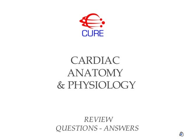 Cure cardiac anatomy physiology questions