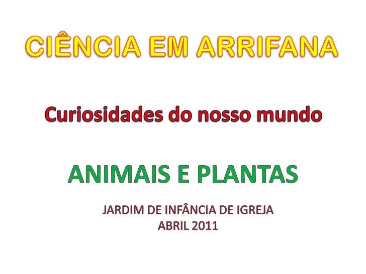 CIÊNCIA EM ARRIFANA<br />Curiosidades do nosso mundo<br />ANIMAIS E PLANTAS<br />JARDIM DE INFÂNCIA DE IGREJA<br />ABRIL 2...