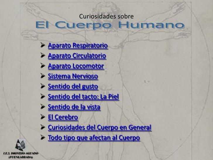 Curiosidades sobre el Cuerpo Humano Slide 2
