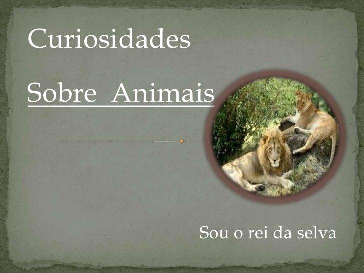 CuriosidadesSobre Animais               Sou o rei da selva