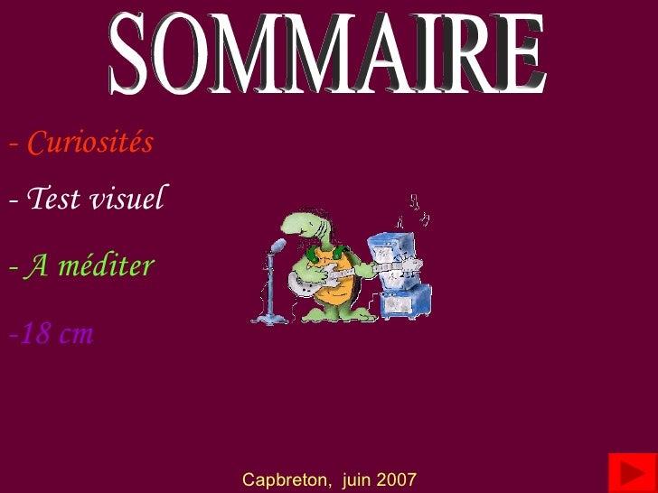 SOMMAIRE - Curiosités - Test visuel - A méditer Capbreton,  juin 2007 -18 cm